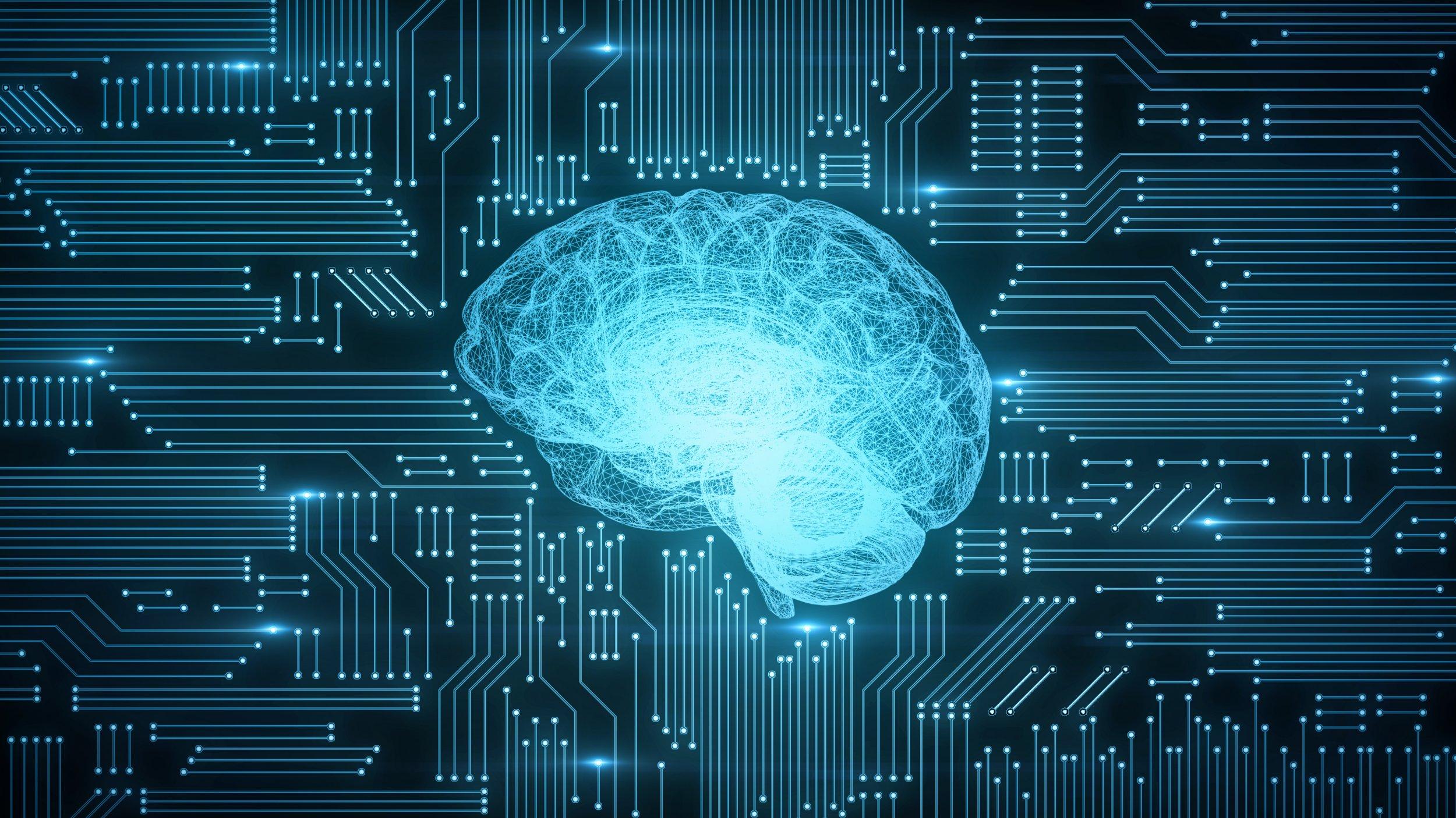 Brain-neurology