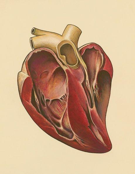 0717-heart