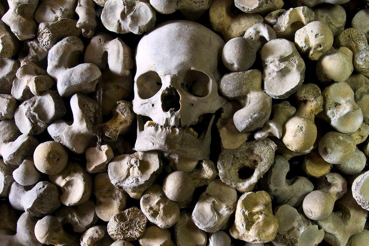 7_19_Bones