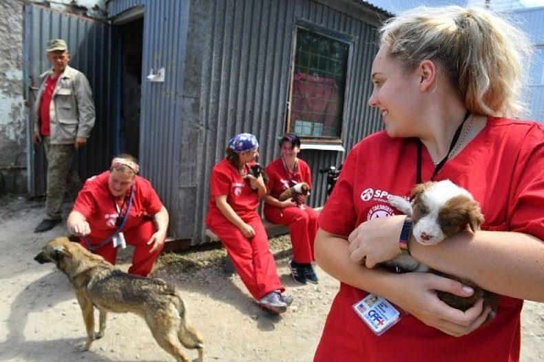 0720-volunteerholdpuppy