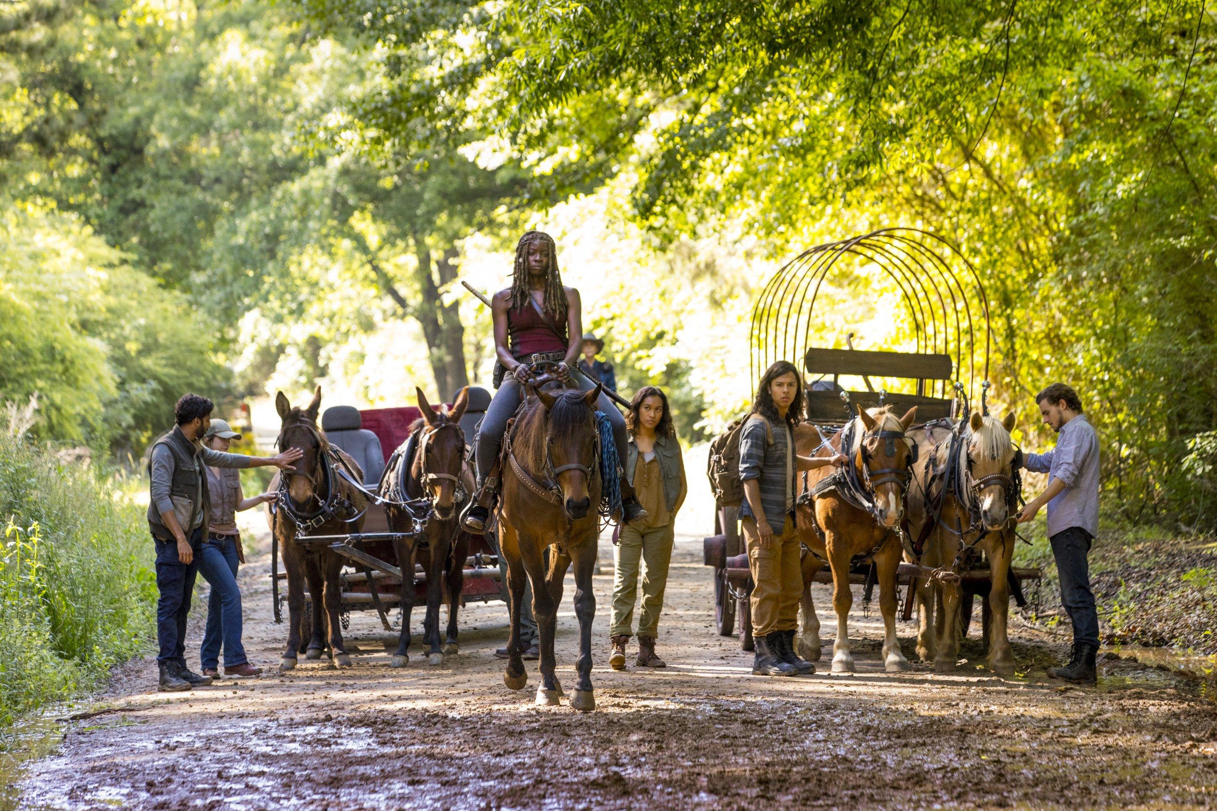 Walking Dead Season 9 Carriage