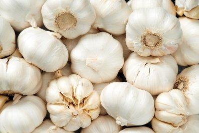 7_23_Garlic