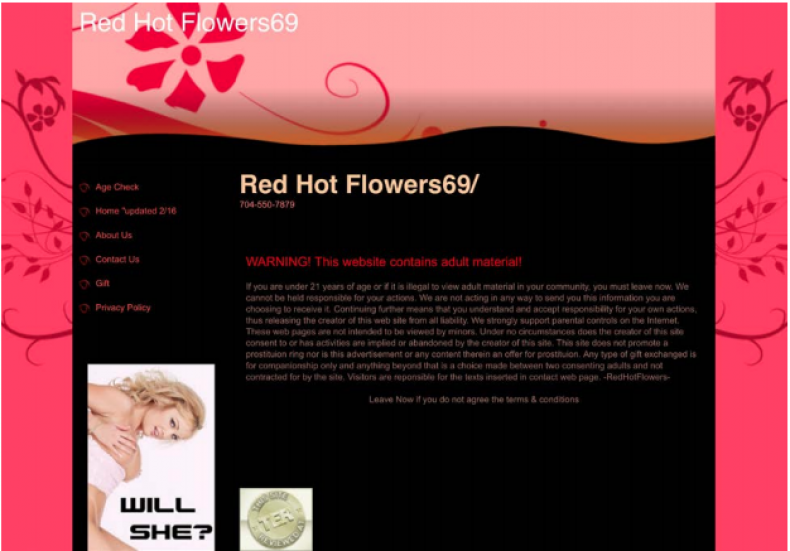RedHotFlowers69.com