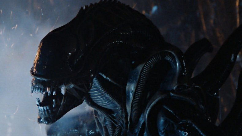 xenomorph-alien