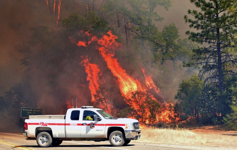 Flames engulf trees