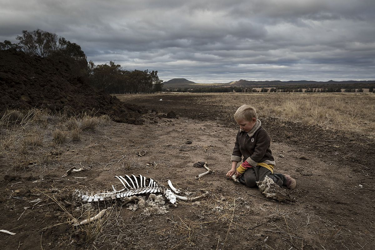 Drought In Australia Turns Farmland To Barren Dustbowl
