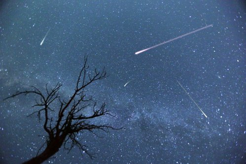 Perseid Meteor Shower: Four Apps That Can Enhance Your Viewing