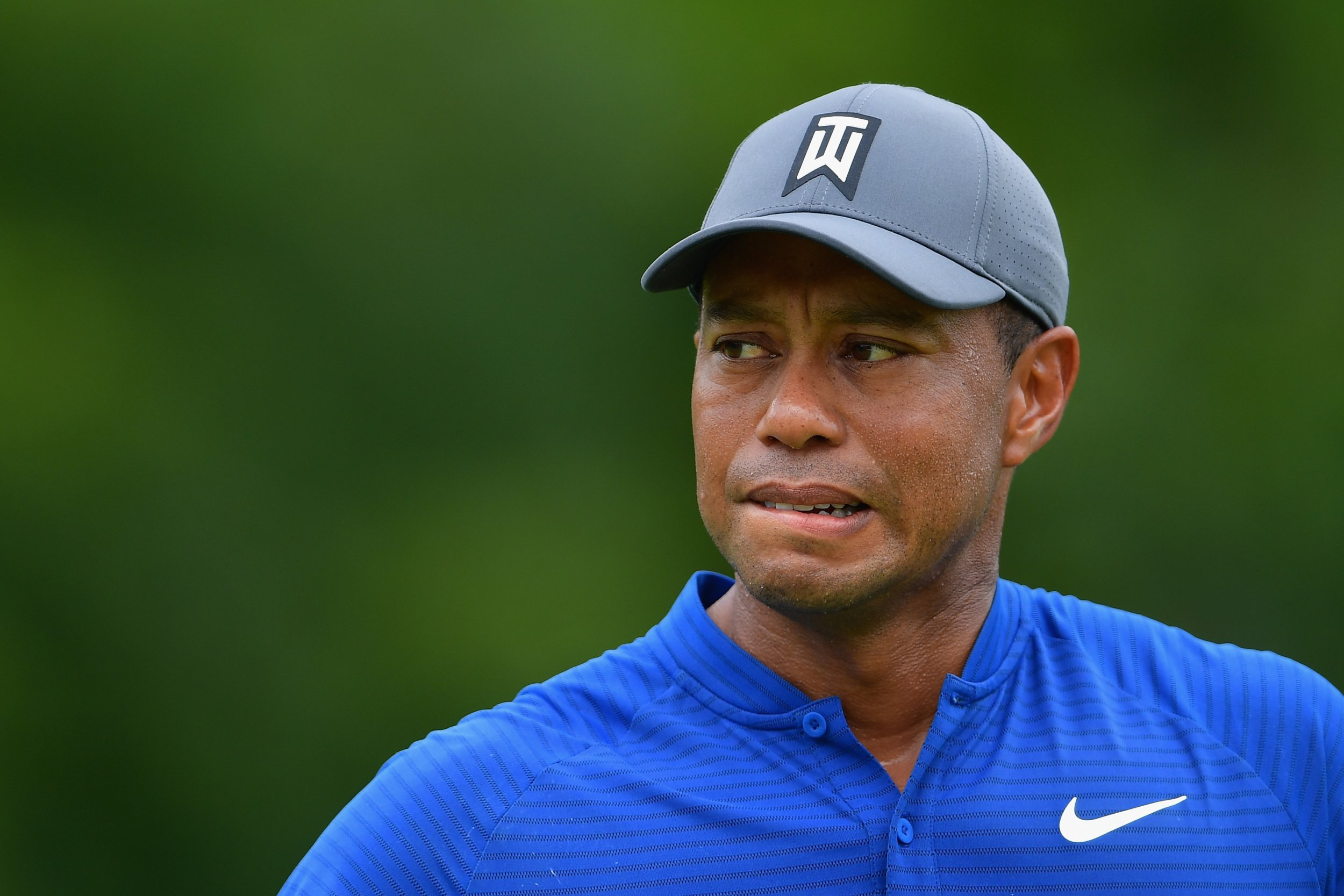 Tiger Woods global brand Essay