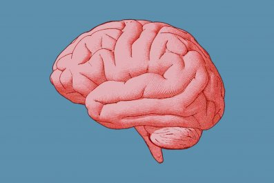 brain-stock