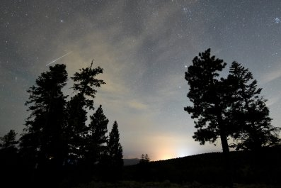 Four apps to download before the perseid meteor shower