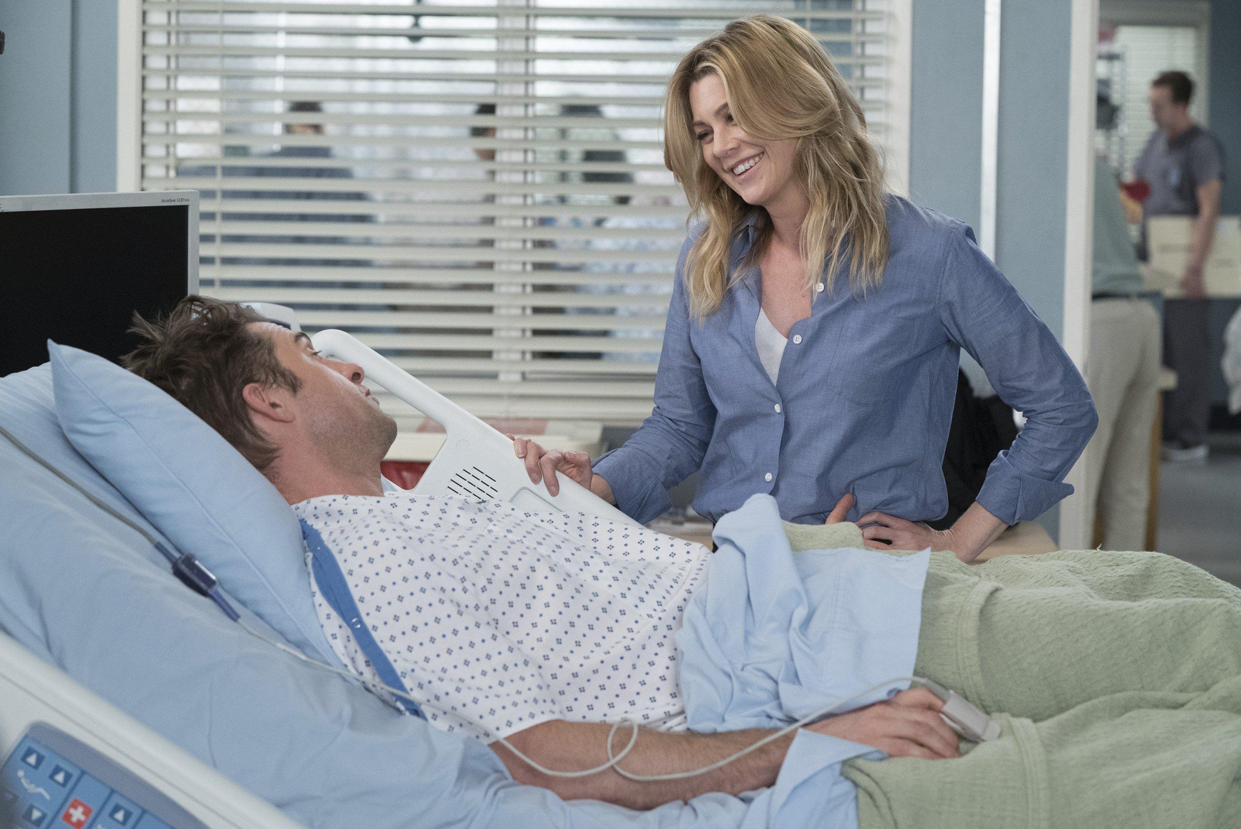 Greys Anatomy Meredith Nick