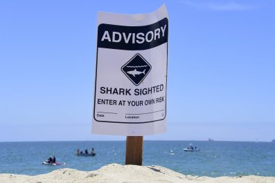 Man bitten by shark at Crystal Beach in Texas