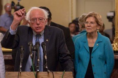 Bernie Danders capitalism, young Americans