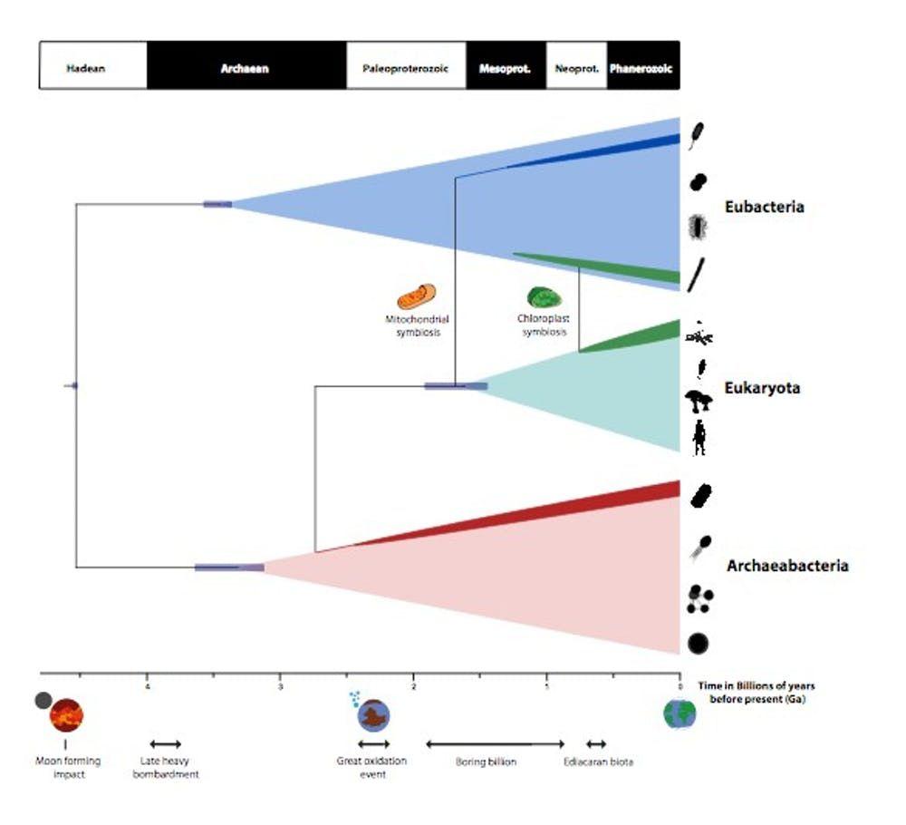 8_21_Evolution Timescales