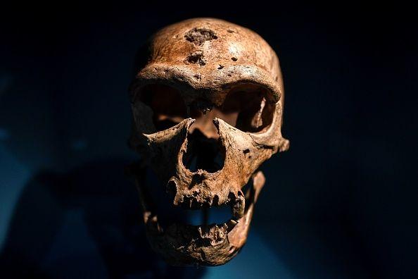 0823-skull