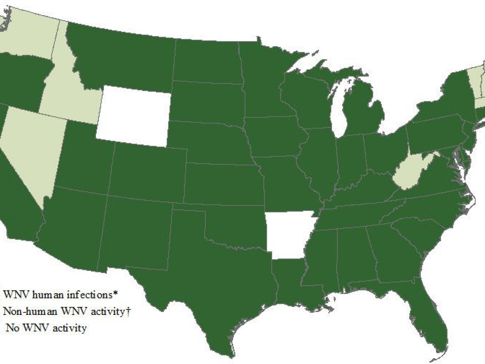 Us Map West Nile Virus West Nile Virus Map: Which States Have Confirmed Cases, What Are