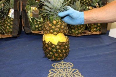 Cocaine Pineapple