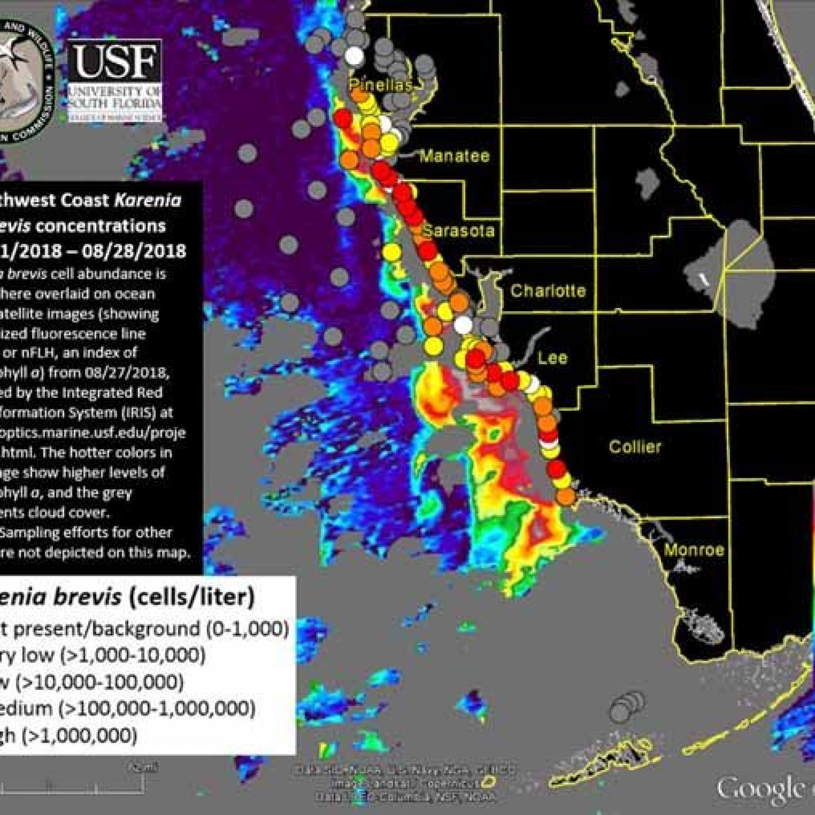 Red Algae Florida Map Red Tide Map, Update: High Concentrations of Algae Found Offshore