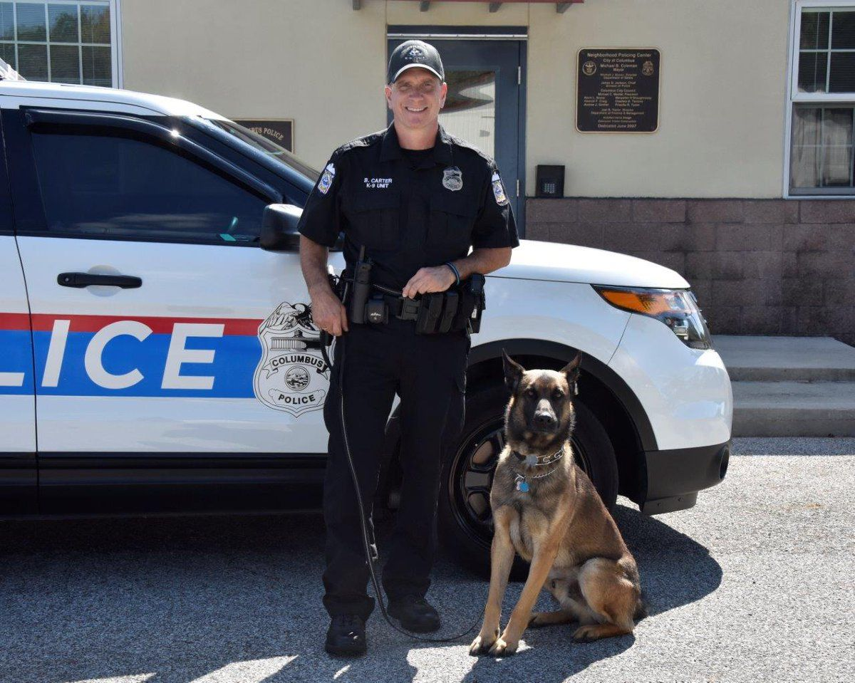 Ohio Officer 'Forced to Shoot' Police Dog Who Turned on Him