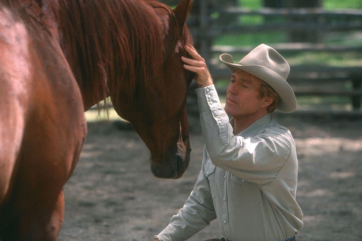 06 The Horse Whisperer