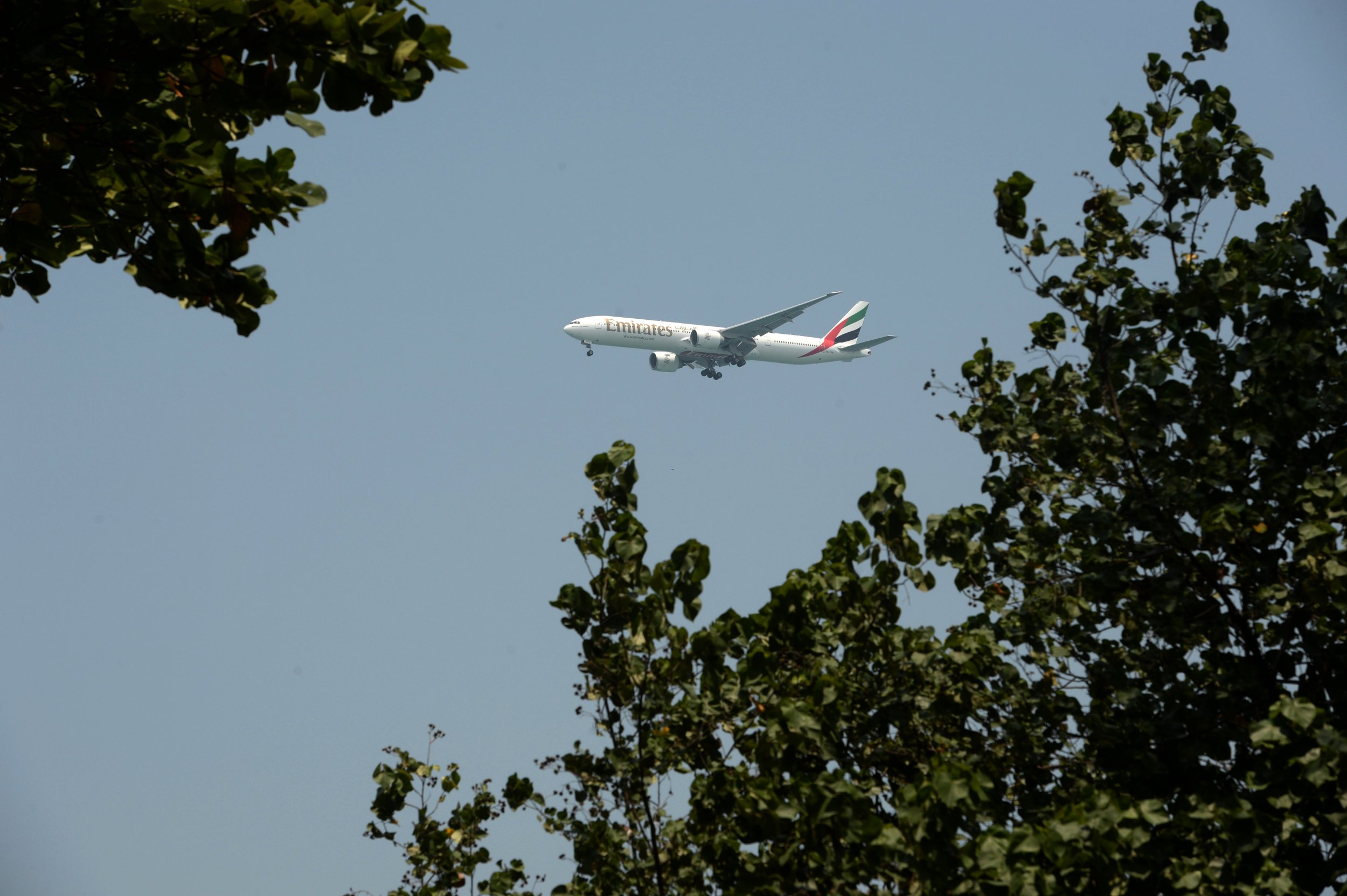Dubai Emirates Flight JFK Sick