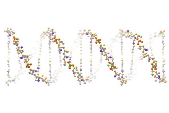 DNA-0905