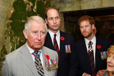 Palace Dismisses Rumors Prince Charles Doesn't Like His Sons