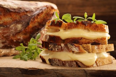 cheese-food-melt-stock
