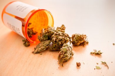 9_18_Medical Marijuana