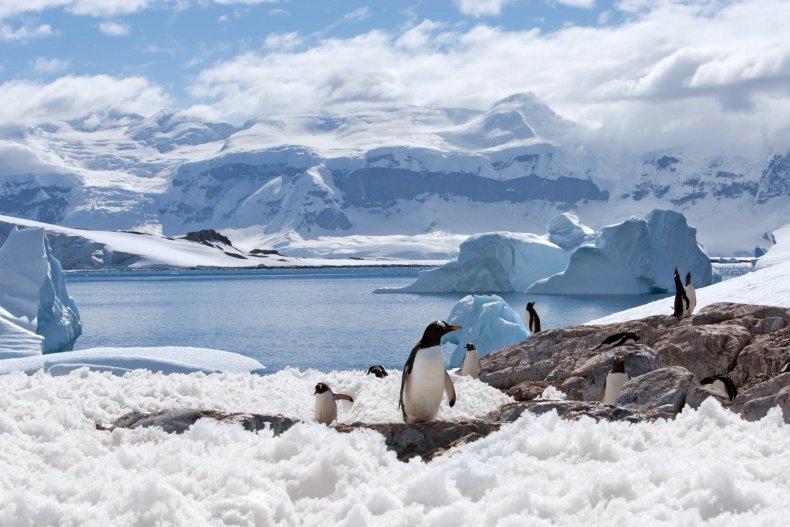 Antarctica-stock