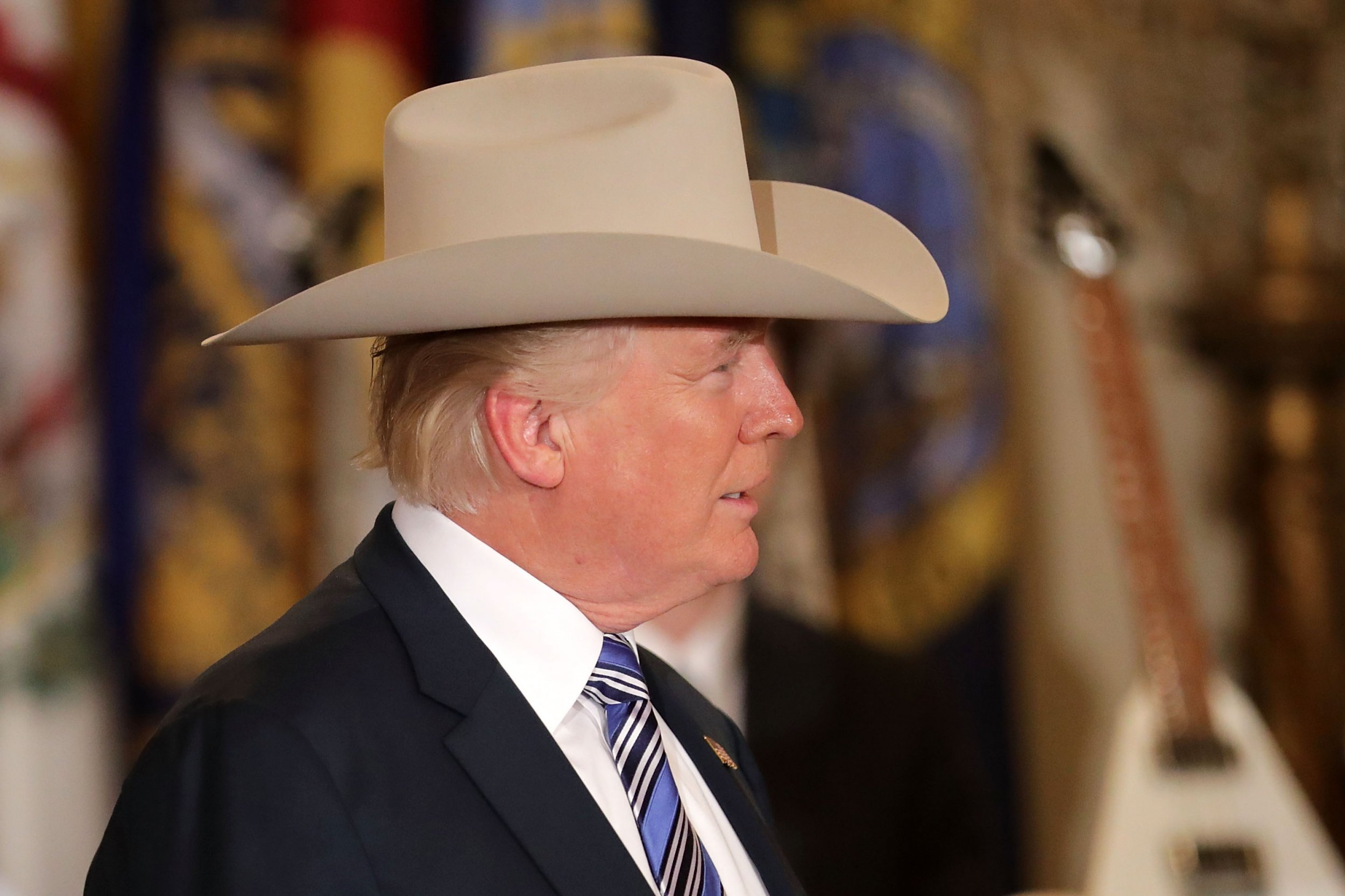 trump in a hat