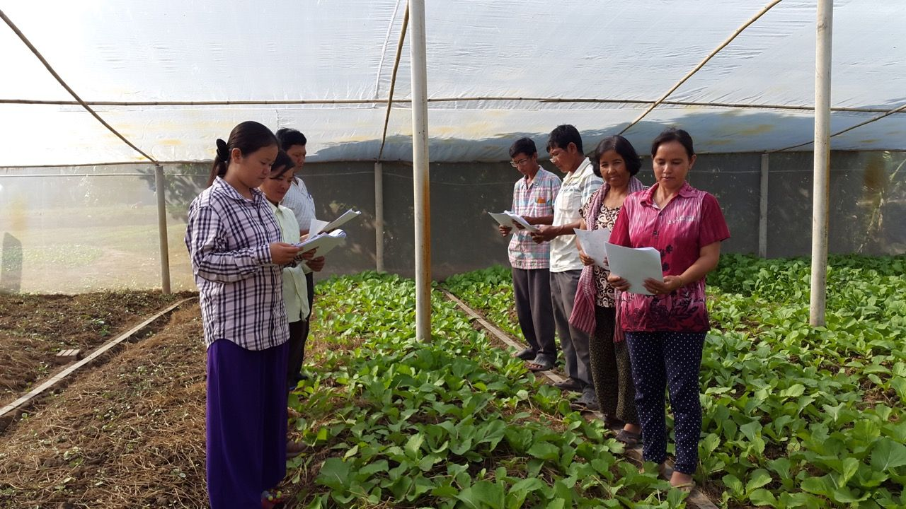 Working with women's farmers