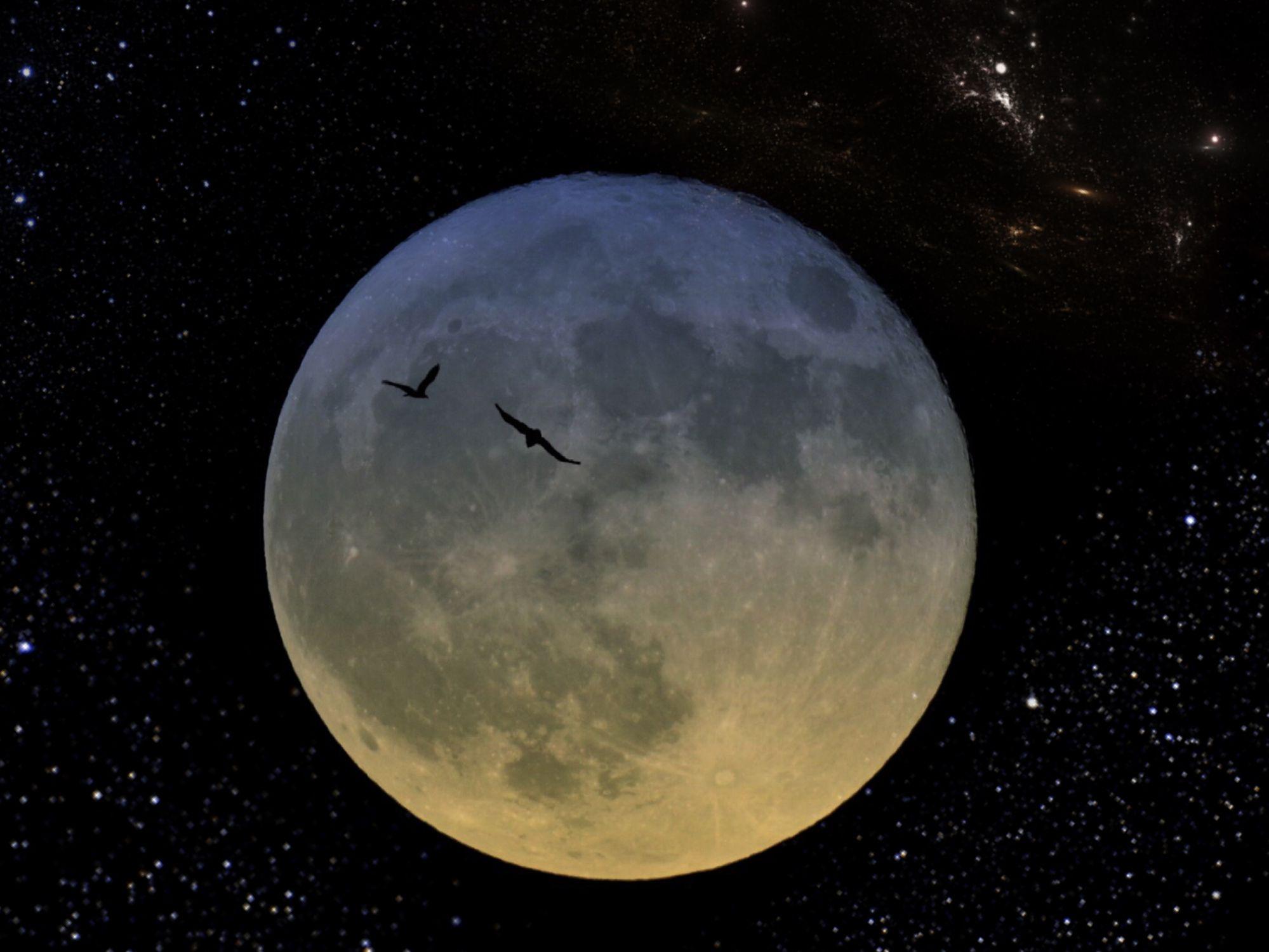 Harvest Moon 2018: Where Do Full Moons Get Their Names?