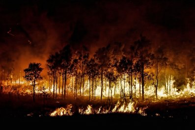 HOR_WildFire_01_160561728