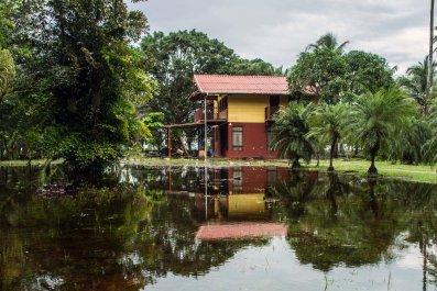 Costa Rica Rain