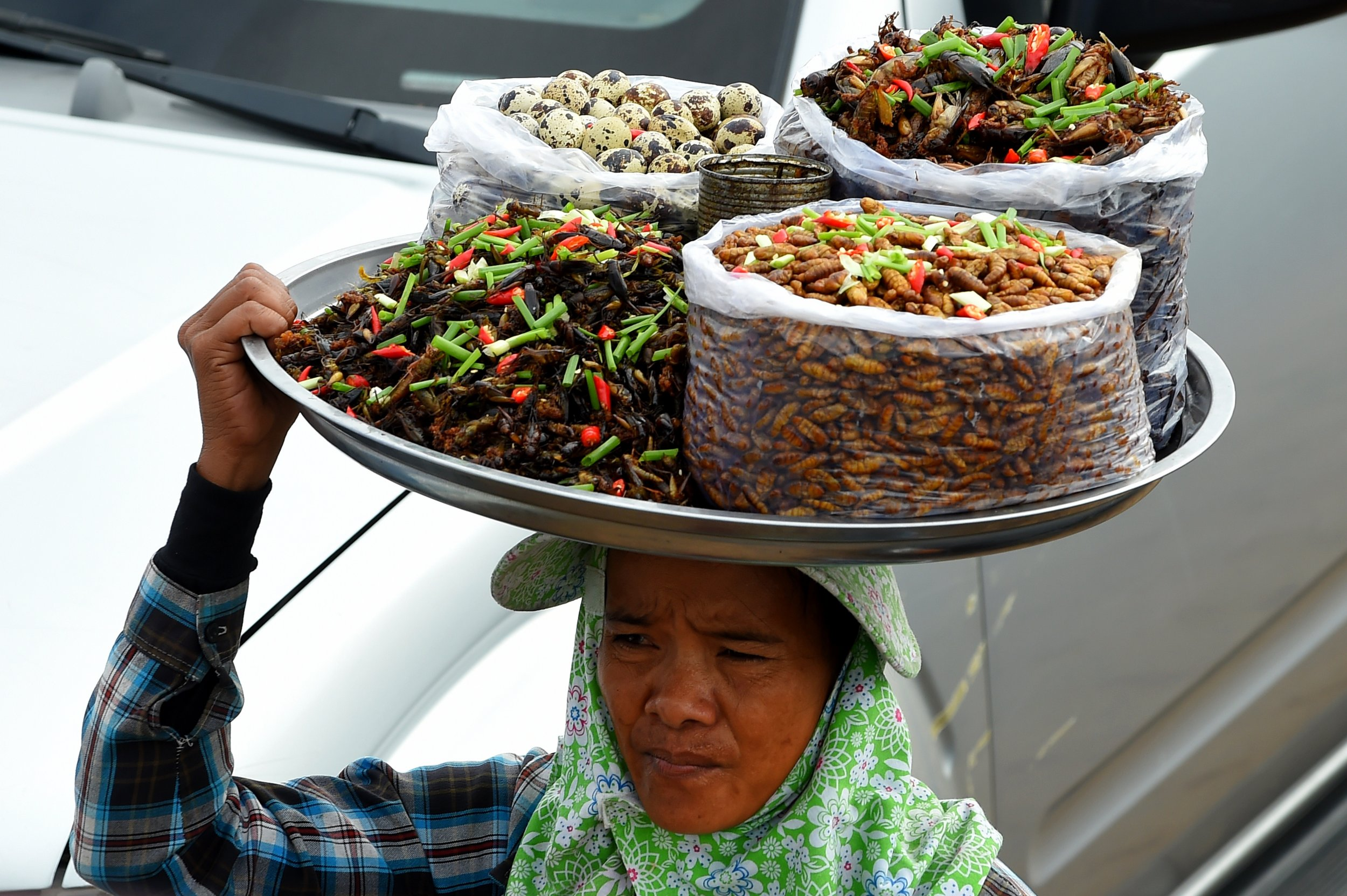 Eating Insects Could Help Fight World Hunger