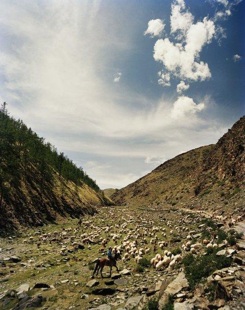 FE_Mongolia_01