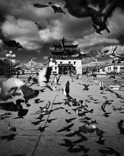 FE_Mongolia_16