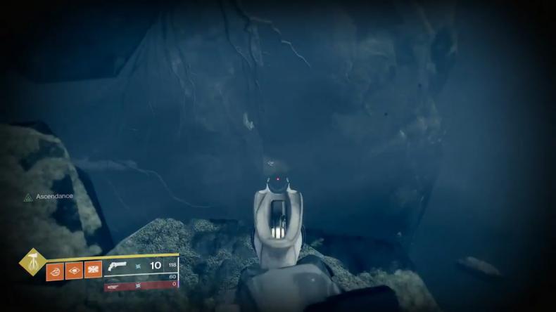 Destiny 2 bone