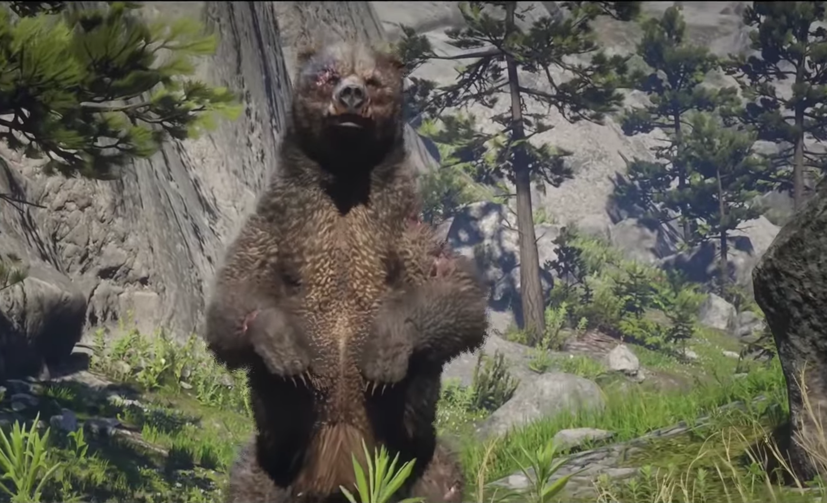 Red Dead 2 Legendary Bear Walkthrough Location Tips And Reward