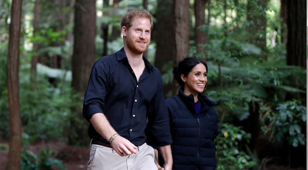 Pictures of Pregnant Meghan Markle's Final Moments of Royal Tour