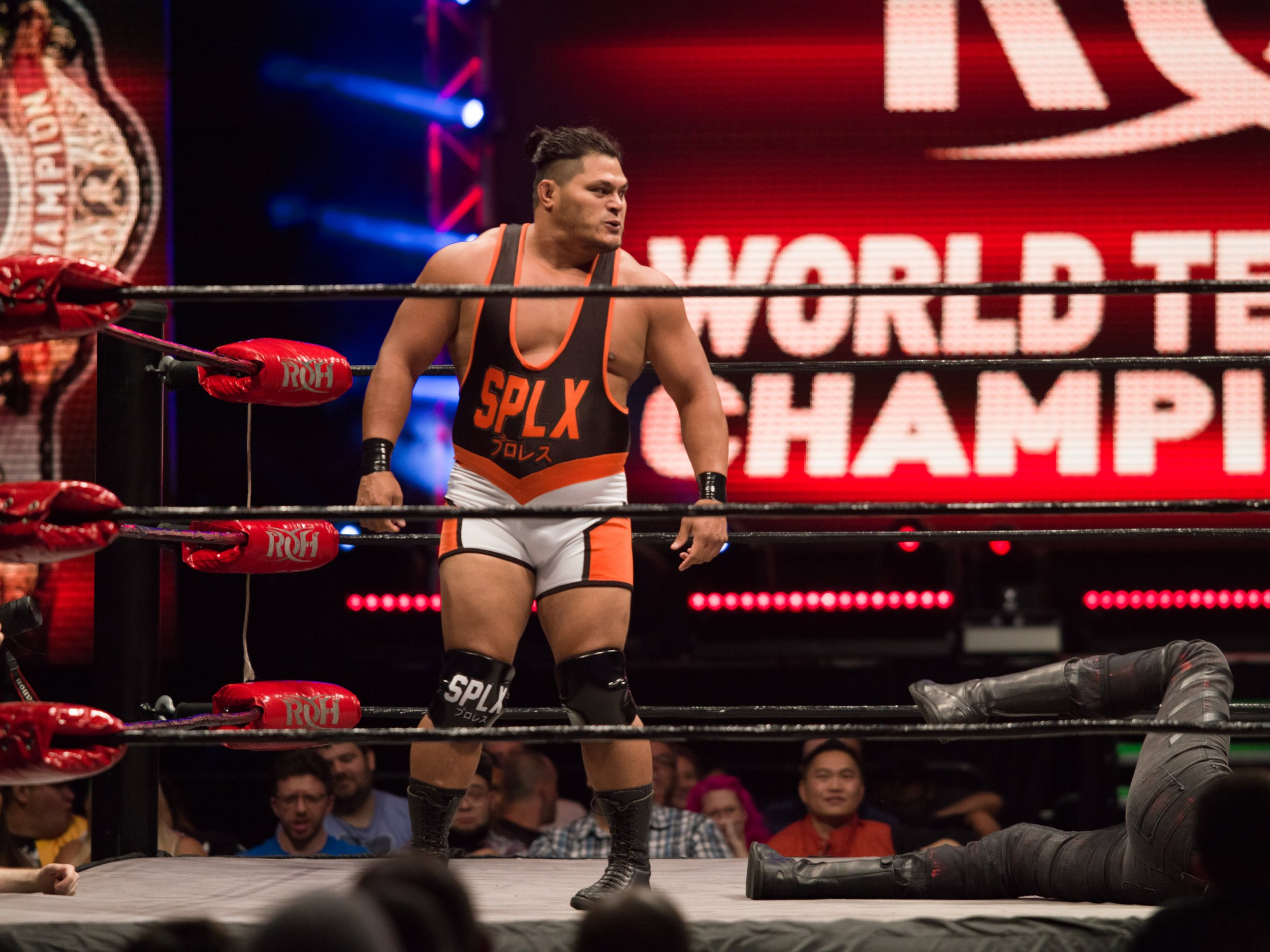 Jeff Cobb 2 Photo Credit RING OF HONOR-Devin Chen