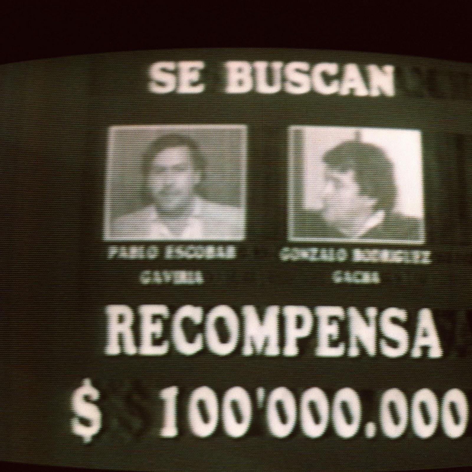 Pablo Escobar Vs  El Chapo Net Worth: Which Brutal Drug Lord