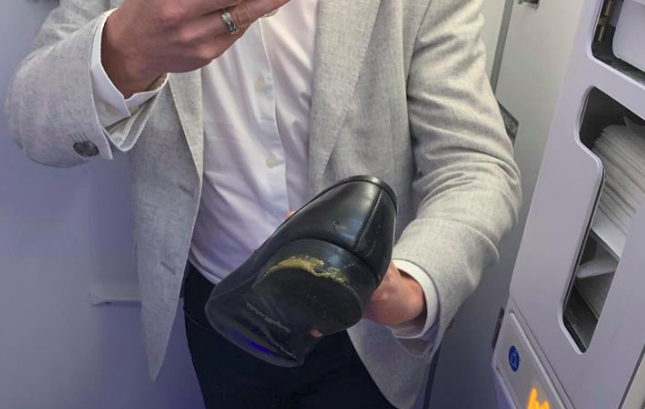 feces on plane