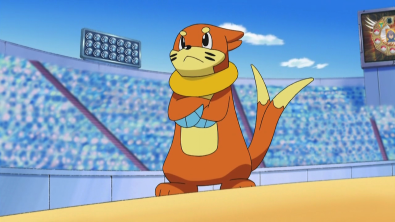 buizel pokemon anime