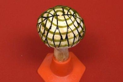 bionic mushroom pic