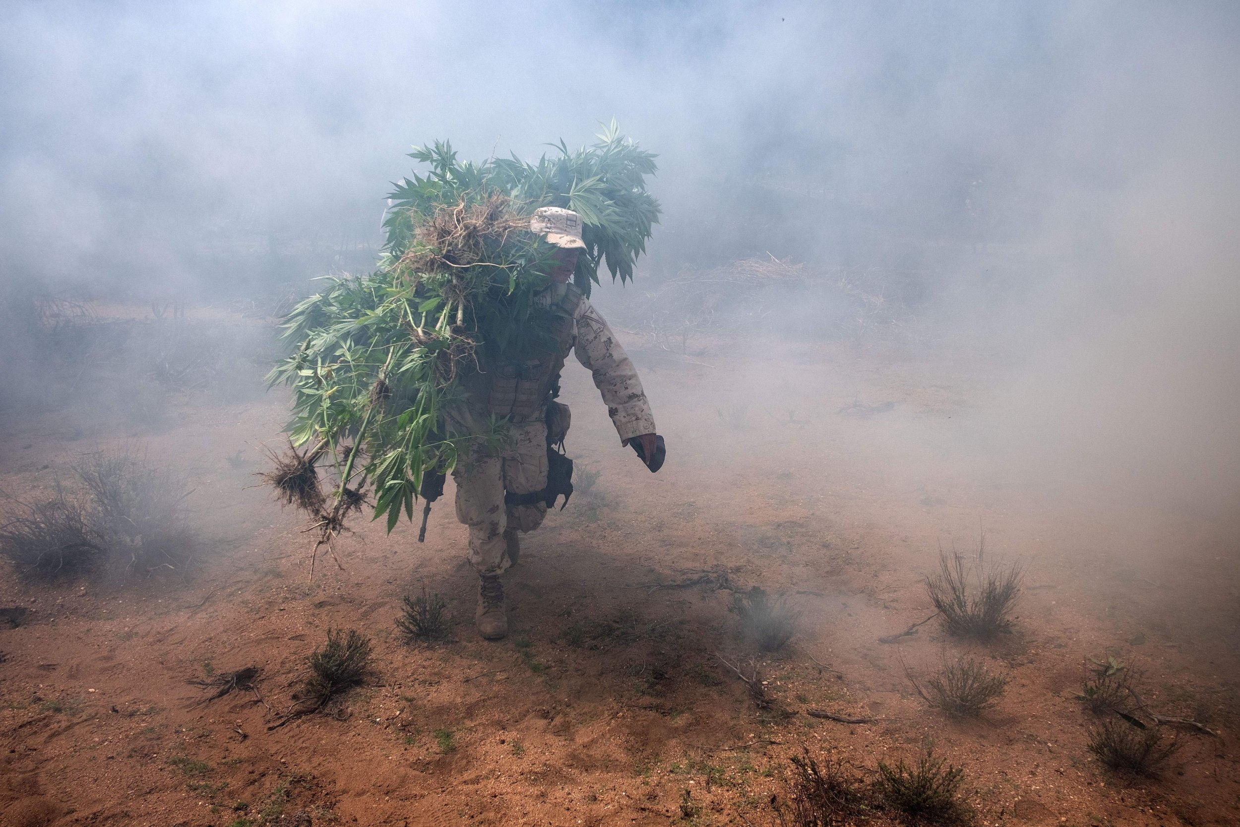 11_9_Weed burning Mexico