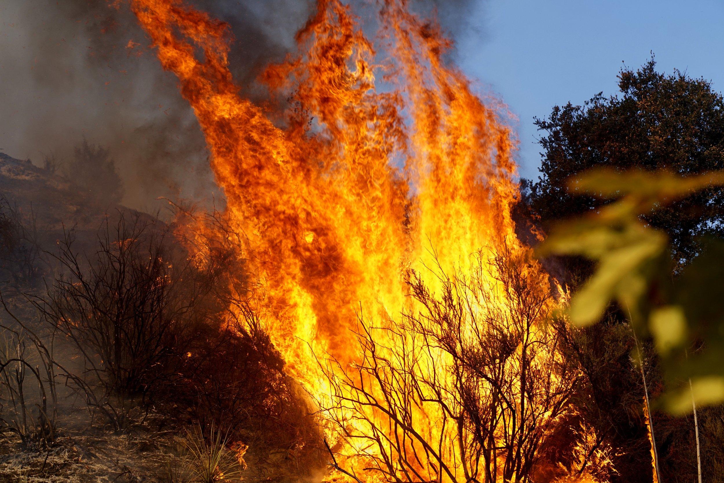 San Benardino Sierra Fire California