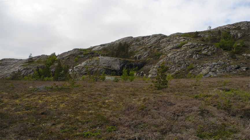 Arctic865