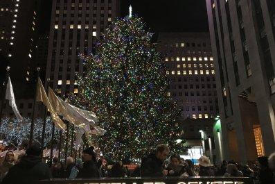 rock plaza tree 2017